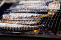 Grilled fish mackerel, cooked on the grill in the open air flow - PhotoDune Item for Sale