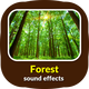 Forest Sound Effects - AudioJungle Item for Sale