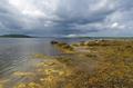 White Sea coast in Karelia, Russia - PhotoDune Item for Sale