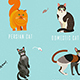Cat Breeds Poster In English - GraphicRiver Item for Sale