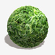 Fern Seamless Texture - 3DOcean Item for Sale