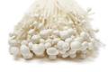 Fresh white enoki mushrooms close up - PhotoDune Item for Sale