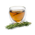 Fresh rosemary tea and fresh twig - PhotoDune Item for Sale