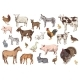 Large Set of Farm Animals with Their Babies - GraphicRiver Item for Sale