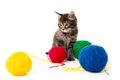 kitten with balls of threads. little kitten on white background. - PhotoDune Item for Sale
