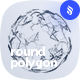Round Polygon Mesh Photoshop Brushes - GraphicRiver Item for Sale