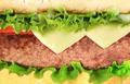 hamburger close-up or macro - PhotoDune Item for Sale
