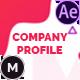 Company Profile - VideoHive Item for Sale