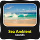 Sea Ambient Sounds