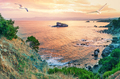 Cape Akamas Bay with seagulls in sky at sunset - PhotoDune Item for Sale