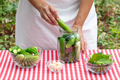 Female cook puts fresh cucumber in a glass jar for preservation - PhotoDune Item for Sale