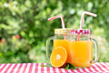 Two jars of orange juice and half an orange - PhotoDune Item for Sale