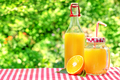 Glass jar and a bottle with orange juice - PhotoDune Item for Sale