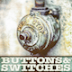 Buttons Switches 041