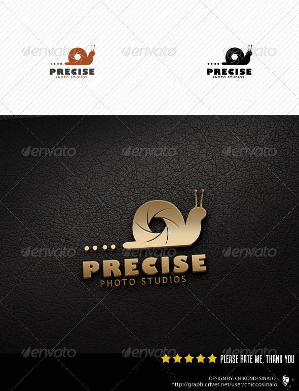 Precise Photo Studio Logo Template
