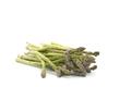 Fresh Harvested Asparagus - PhotoDune Item for Sale