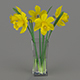 Yellow daffodils in a glass vase - 3DOcean Item for Sale