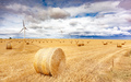 Windmill turbines in a agricultural landscape with fields and meadows. - PhotoDune Item for Sale