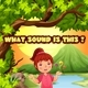 What sound is this? - HTML5 - Educational game - CodeCanyon Item for Sale