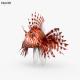 Lionfish HD - 3DOcean Item for Sale