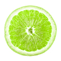 Lime slice - PhotoDune Item for Sale