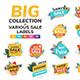 Flat Design Origami Summer Sale Labels - GraphicRiver Item for Sale