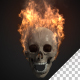 Burning Scull - VideoHive Item for Sale