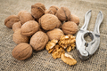 Background of fresh walnuts. Natural walnut background - PhotoDune Item for Sale