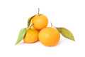 Ripe mandarines with leaves close-up on a white background - PhotoDune Item for Sale
