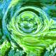 Organic Universe Ident