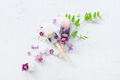 Ice Lollies Decorated with Flowers - PhotoDune Item for Sale