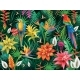 Background From Tropical Flowers, Leaves and Birds - GraphicRiver Item for Sale