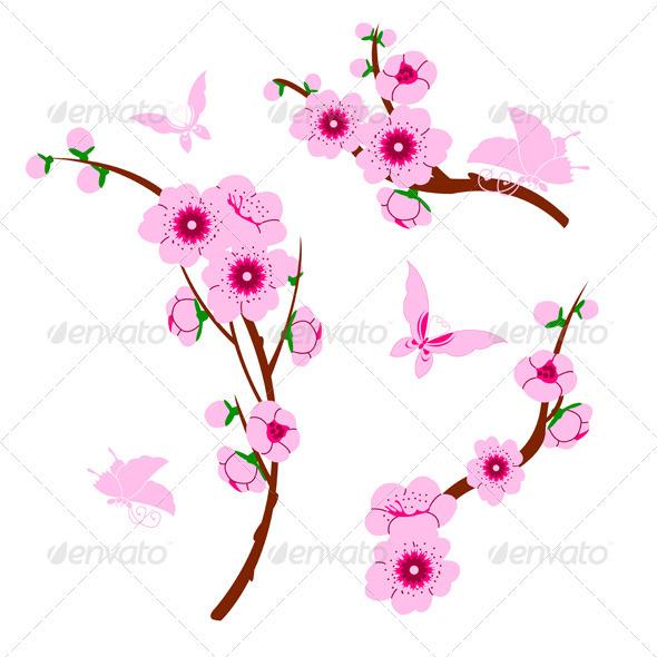 Sakura Element Graphics Designs Templates From Graphicriver