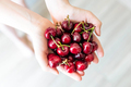 Handful of organic cherries - PhotoDune Item for Sale