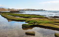 El Medano beach with town at background, Tenerife, Canary Islands, Spain - PhotoDune Item for Sale