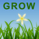 Growing Grass and Flowers - VideoHive Item for Sale