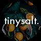 TinySalt - Personal Food Blog WordPress Theme - ThemeForest Item for Sale