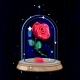 Vector Red Rose in Glass Flask - GraphicRiver Item for Sale