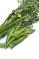 Appetizing Summer vegetable - PhotoDune Item for Sale