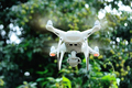 Drone with camera flying taking pictures of lychee fruits in summer - PhotoDune Item for Sale
