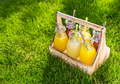 Assortment of lemonade and ice tea in bottles in wooden rack in the grass - PhotoDune Item for Sale