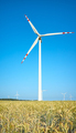 Windmills on a crop field on a beautiful summer day. - PhotoDune Item for Sale
