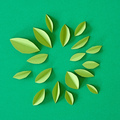 abstract green paper leaves - PhotoDune Item for Sale