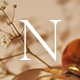 Nillé - Elegant eCommerce Theme - ThemeForest Item for Sale