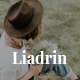 Liadrin - One Page Creative HTML Template - ThemeForest Item for Sale