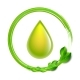 Green Glossy Drop with Green Leaves Isolated - GraphicRiver Item for Sale