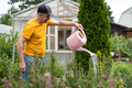 man watering flowers using can in his garden. - PhotoDune Item for Sale