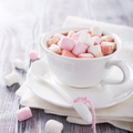 Cup of hot chocolate with mini marshmallows - PhotoDune Item for Sale
