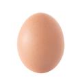Egg over white - PhotoDune Item for Sale
