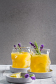 Summer orange and lemon cocktail with fresh lavender and rosemary - PhotoDune Item for Sale